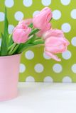 Beautiful tulips in a pink vase Stock Photos