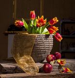 Beautiful tulips and red apples Stock Photo