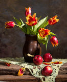 Beautiful tulips and red apples Royalty Free Stock Photo