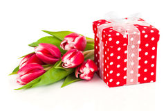Beautiful tulips with red polka-dot gift box Stock Photos