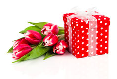 Beautiful tulips with red polka-dot gift box Stock Images