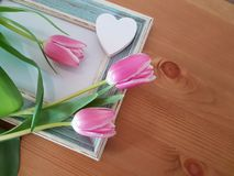Beautiful Tulips With A Vintage Frame royalty free stock photo