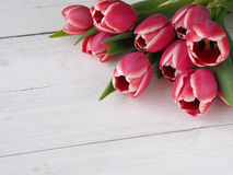Beautiful tulips on white wood Stock Photography