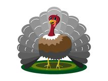 The beautiful turkey standing on the green circle carpet stock illustration