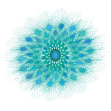 Beautiful turquoise circular ornament Royalty Free Stock Images