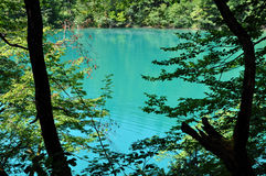 Beautiful turquoise lake in Plitvice, Croatia Stock Photo