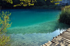 Beautiful turquoise lake in Plitvice, Croatia Royalty Free Stock Image