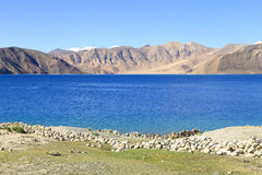 Beautiful turquoise Pangong Lake in Leh, India Stock Photos