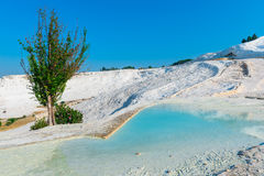 Beautiful turquoise water  travertines Royalty Free Stock Images