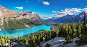 Beautiful turquoise waters of the Peyto Lake in Banff National Park, Canada. Beautiful turquoise waters of the Moraine Lake with snow-covered peaks above it in stock images