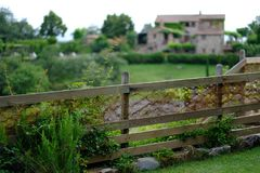 A lush green fence in Tuscany royalty free stock images
