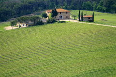 Beautiful Tuscan House Royalty Free Stock Photo