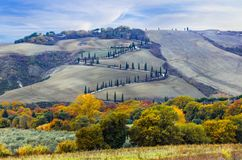 Beautiful Tuscany countryside- winding road frim cypresses. Ital Stock Photography