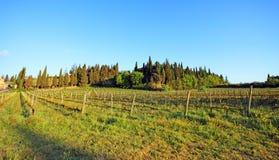 Beautiful Tuscany landscape in Italy . Beautiful landscapes of molar Tuscany in Italy Royalty Free Stock Photo