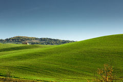 Beautiful Tuscany landscape, Italy. Royalty Free Stock Photo