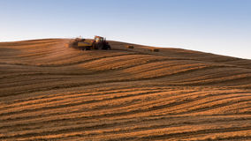 Beautiful Tuscany landscape. With traditional farm tractor and tilled fields in golden evening light, Val d`Orcia, Italy Royalty Free Stock Photo