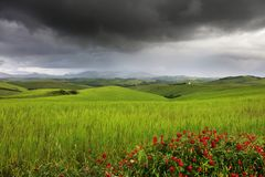 Beautiful summer landscape in Tuscany in a stormy day royalty free stock images