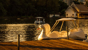 Beautiful Twilight Lake View of Lumpini Park with driving duck boat and modern buildings as background. Royalty Free Stock Photos
