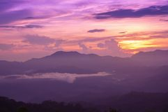 Beautiful twilight in rainforest after rainy. Stock Images