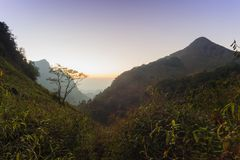 Beautiful twilight at sunset  in rainforest. Royalty Free Stock Photography
