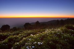 Beautiful twilight time.Morring sunrise at Huai Nam Dang Nationa Stock Image