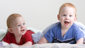 Beautiful twin babies Royalty Free Stock Photography