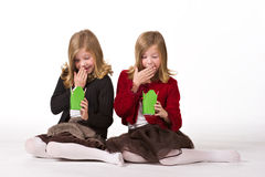 Beautiful twin girls at Christmas Royalty Free Stock Photo