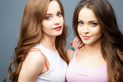 Beautiful twins young women in casual clothes over grey background. Beauty fashion portrait Stock Photography