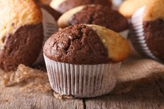 Beautiful two-tone chocolate muffins close-up, horizontal Royalty Free Stock Photography