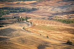Beautiful typical countryside summer landscape in Tuscany Italy Royalty Free Stock Image