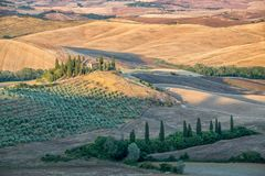 Beautiful typical countryside summer landscape in Tuscany Italy Royalty Free Stock Photo