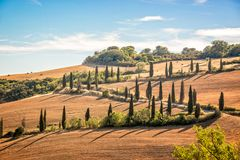 Beautiful typical landscape of Tuscany with rows of cypresses, La Foce, Tuscany Italy. Beautiful typical landscape of Tuscany with rows of cypresses, La Foce stock photo