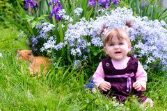 A beautiful Ukrainian little girl playing on a lawn with an ore cat royalty free stock image