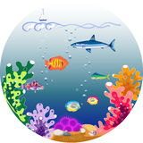 Beautiful underwater world Stock Photography