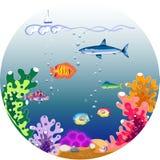 Beautiful underwater world Stock Photography