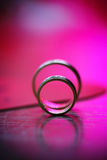 Beautiful union of wedding golden rings Stock Images