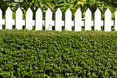 A beautiful unique  fence Stock Images