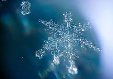 Beautiful unique snowflake. Patterns of frozen snow Royalty Free Stock Photo