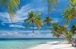 Beautiful unspoilt beach. On the maldives Stock Photos