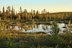 Beautiful untouched nature of the Finnish Lakes, Norway Royalty Free Stock Photos
