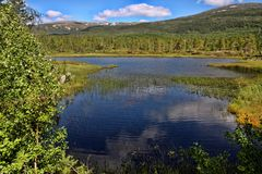 Beautiful untouched nature of the Norwegian Lakes, Norway Royalty Free Stock Images