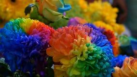 Beautiful unusual interesting multi-colored rainbow peonies, daisies, roses. Selection of flowers, unusual flower color. Beautiful unusual interesting multi stock footage