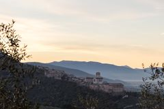 Beautiful and unusual view of Assisi Umbria at dawn, with some. Out of focus olive trees framing the image royalty free stock photography