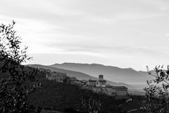 Beautiful and unusual view of Assisi Umbria at dawn, with some. Out of focus olive trees framing the image stock image