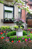 Beautiful urban garden Stock Images