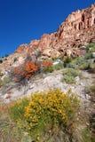 Beautiful Utah Scenery Stock Photography