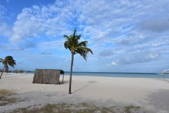 Beautiful vacation spot on eagle beach in Aruba. Beautiful vacation spot located on eagle beach in Aruba Royalty Free Stock Photo