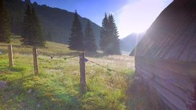Beautiful valley Chocholowska at sunrise, Tatra Mountains, Poland stock video