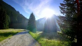 Beautiful valley Chocholowska at sunrise, Tatra Mountains, Poland. Europe stock video footage