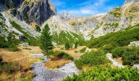 Beautiful valley in High tatras, Slovakia Stock Image